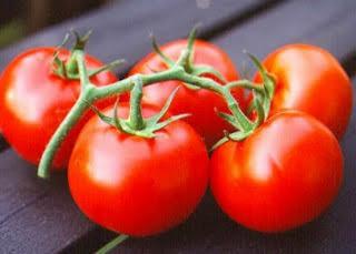 Tomat untuk diabetes