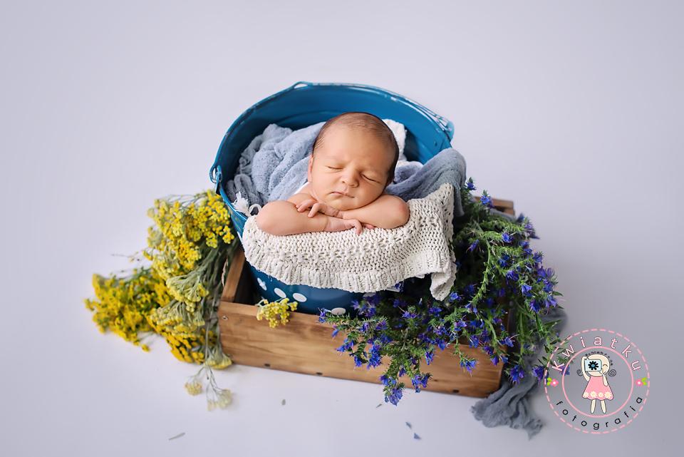 zdjęcie chłopca w wiaderku