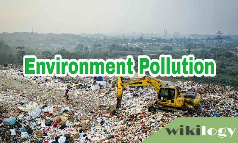 environment pollution paragraph