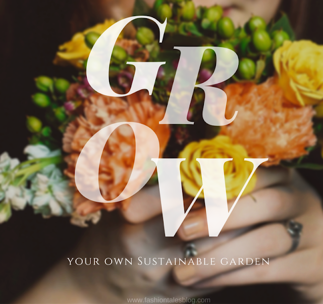PlowBox Is A Subscription Service By Seattle Seed Company (SSC), And  Delivers One Hundred Percent Organic Seeds, And Eco Friendly Or Garden  Related Gifts ...
