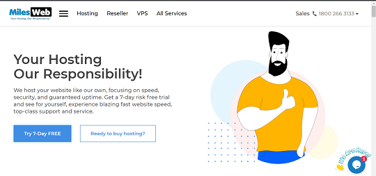 MilesWeb Review, best web hosting for small business