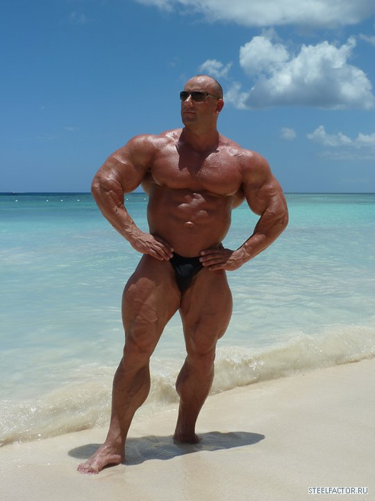 Tom katt bodybuilder