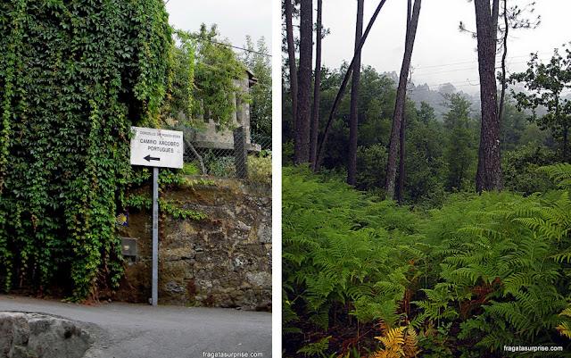 Rúa dos Cabaleros, trecho de subida íngreme da Rota Portuguesa do Caminho de Santiago entre O Porriño e Redondela