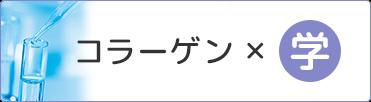 コラーゲン×学