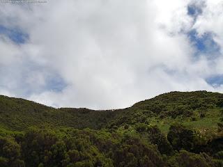 PORTUGAL / Algar do Carvão, Ilha Terceira, Açores, Portugal