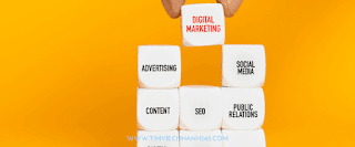 Digital Marketing Internship tại Kalpha
