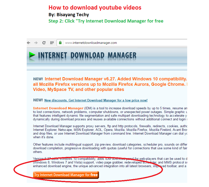 Bisayang techy how to download youtube videos step 4 select the type of video file and download it ccuart Choice Image
