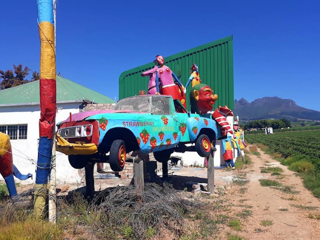 A scarecrow car in the Mooiberge strawberry farm, Cape Town