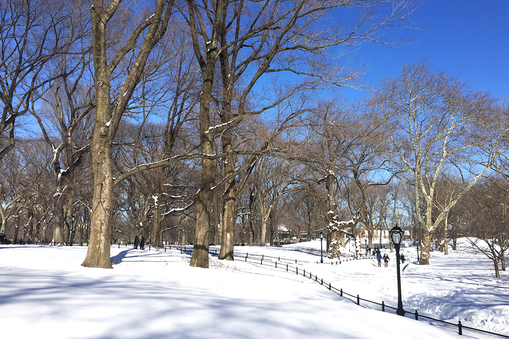 Snowy weekend in NYC - travel & lifestyle blog