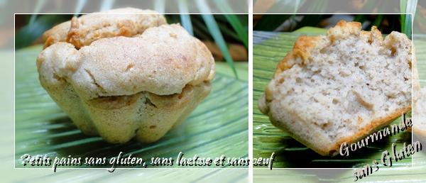 http://gourmandesansgluten.blogspot.fr/2013/01/petits-pains-sans-gluten-sans-lactose.html