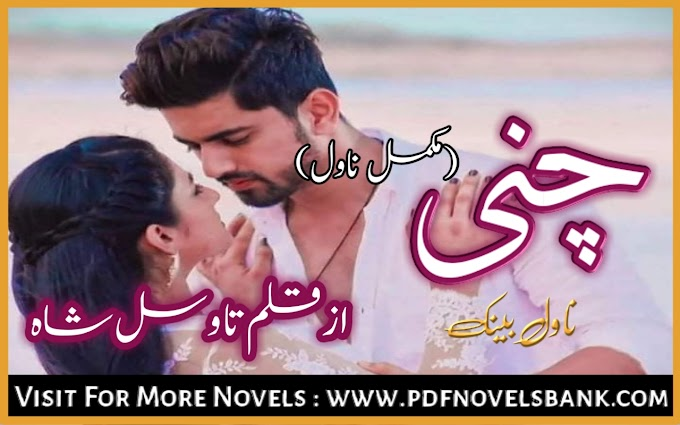 Chunni Novel by Tawasul Shah Complete Pdf Download