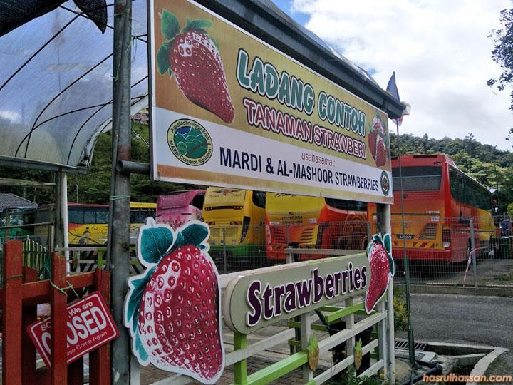 taman agroteknologi Mardi cameron highlands