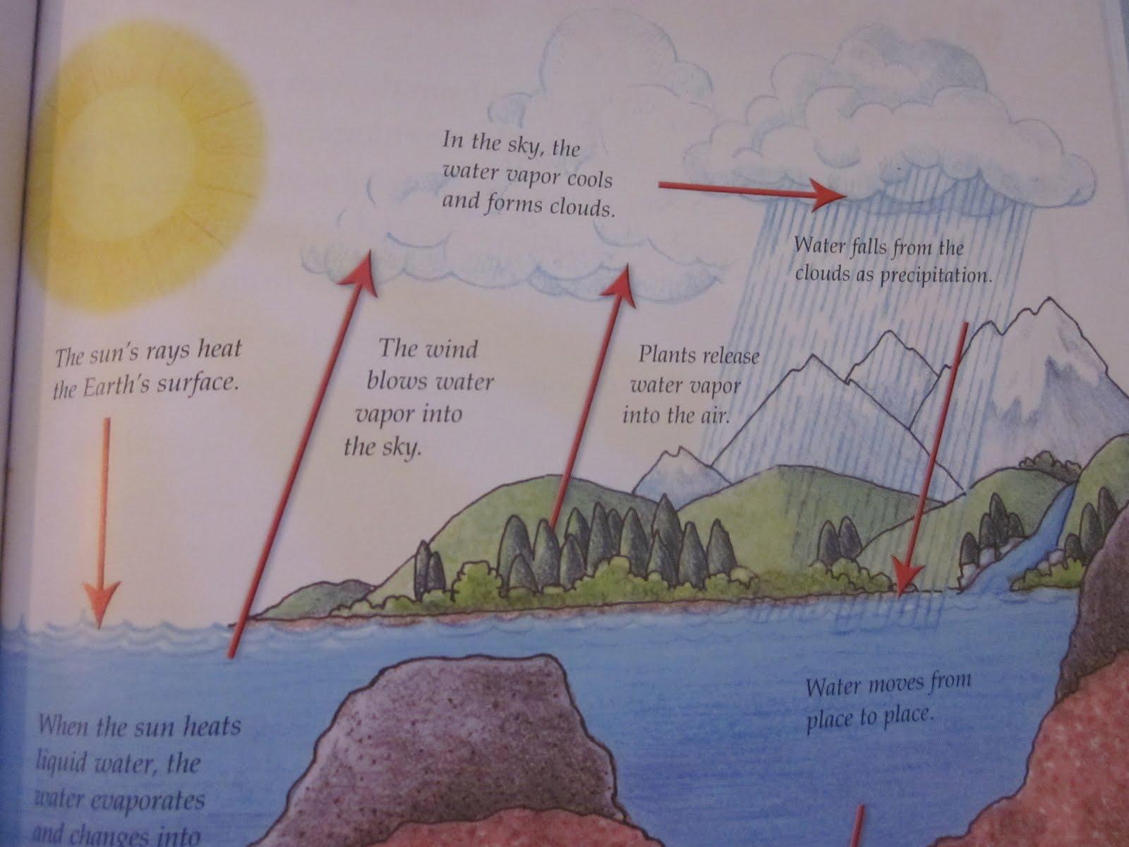 Kindergarten Homeschool Ideas Water Cycle Song