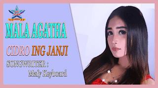 Lirik Lagu Cidro Ing Janji - Mala Agatha