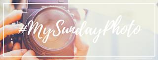 #MySundayPhoto: Week 1