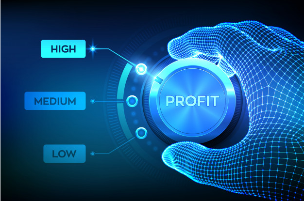 key performance indicator profit margin