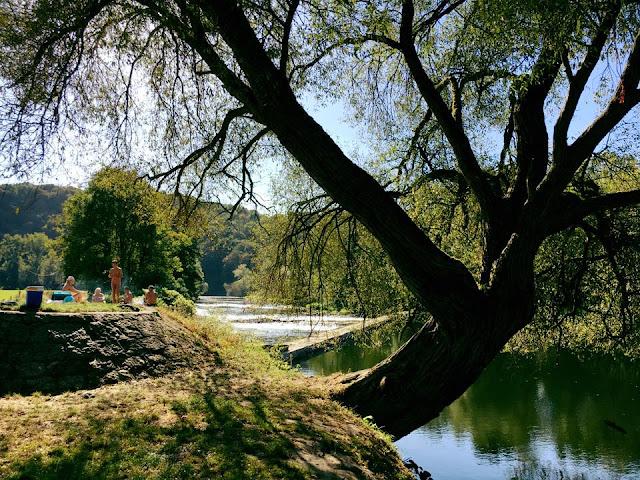 Eind september: zwemmen in de Ourthe bij Vakantiehuis Auberge Le Barrage