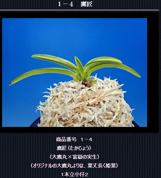http://www.fuuran.jp/1-4html
