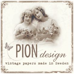 I Design for Pion Design