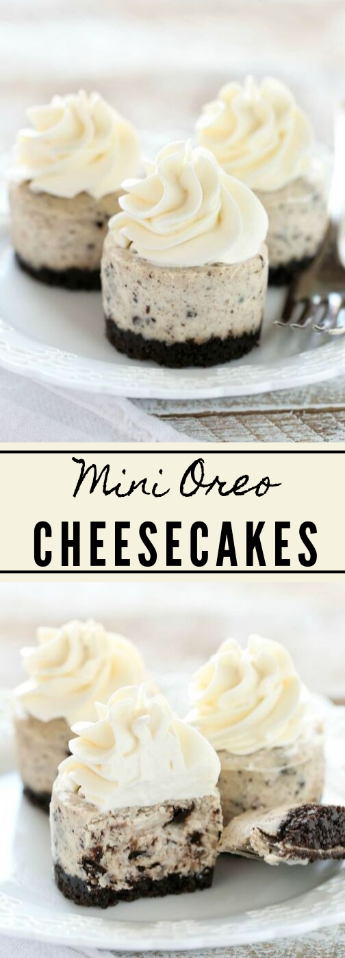 MINI OREO CHEESECAKES #mini #oreo #cheesecakes #desserts #party