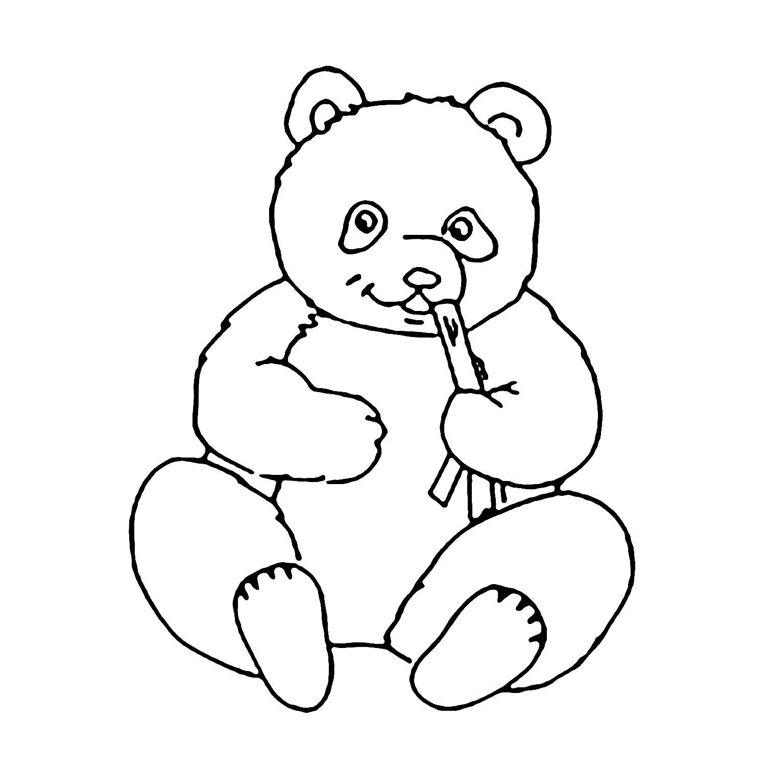 Tranh tô màu con gấu trúc bé