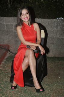 Actress Madalasa Sarma Latest Cute Spicy Pictures Gallery At Ramleela Movie Platinum Disc Function (6)