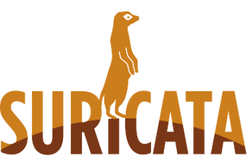 Suricata A Network Intrusion Detection And Prevention Engine