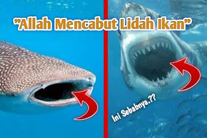 Sejarah Awal Allah Mencabut Lidah Ikan