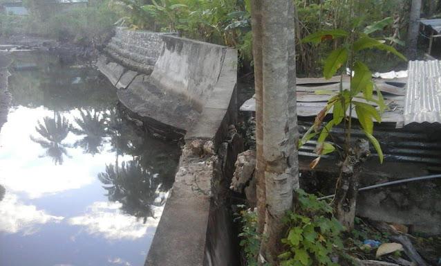 Kondisi Fisik Tanggul di Sungai Bua-Bua Timur Alami Patahan Akibat Akar Pohon
