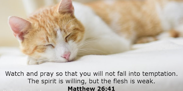 Watch and pray so that you will not fall into temptation. The spirit is willing, but the flesh is weak.