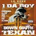 DE AFARĂ: 1 Da Boy - Down South Texan (2003)