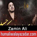 https://www.humaliwalayazadar.com/2017/01/zamin-ali-nohay-2012-to-2018.html