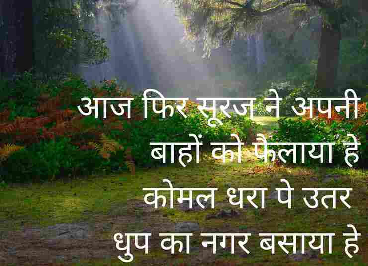 New nature shayari Dhoop ka Nagar