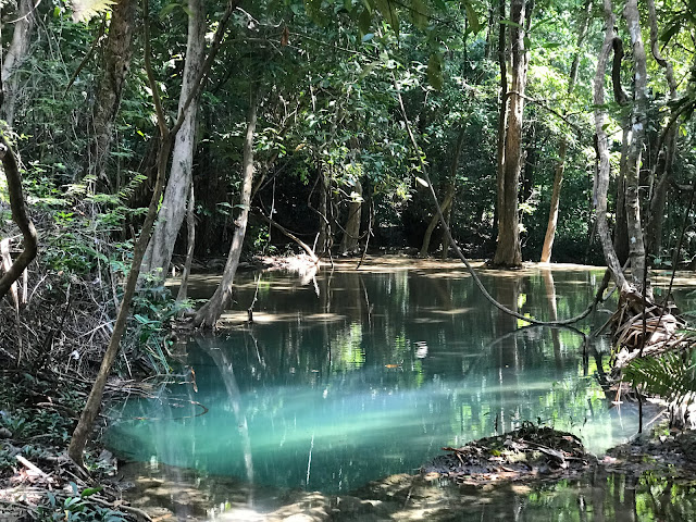 light blue water of the Thai Jungle