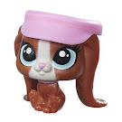 Littlest Pet Shop Multi Pack Harmony van Hatsen (#282) Pet