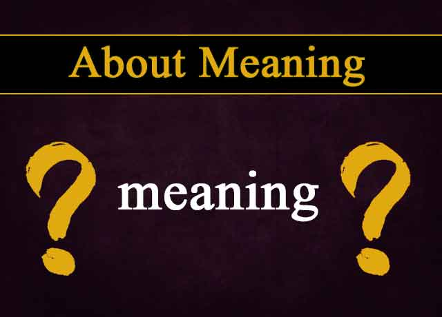 what is actual meaning of meaning