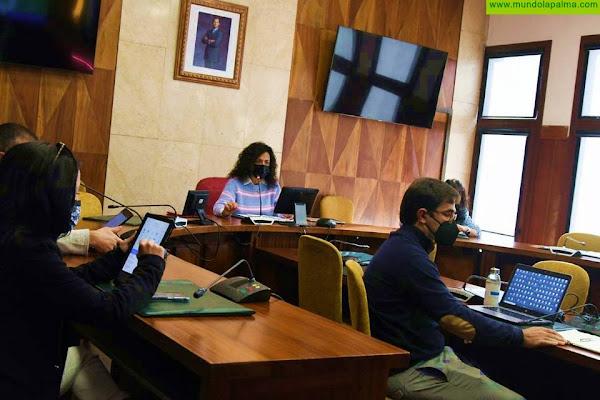 El Cabildo coordina con los ayuntamientos de La Palma la puesta en marcha del Plan Estratégico de Participación Ciudadana