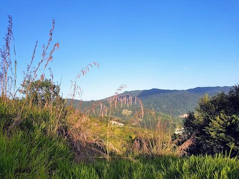 【爬山乐】士毛月茅草山 Broga Hill @ Semenyih| 适合小小孩的小山丘