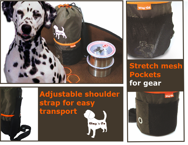 Simplify Dog Travel - Wag N Go