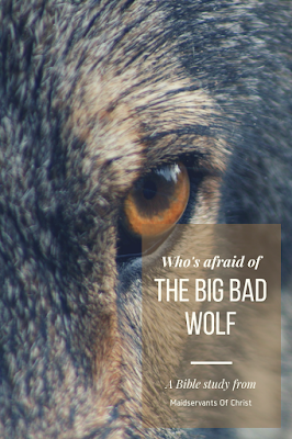 Who's afraid of the big bad wolf?  A blog post from Maidservants Of Christ.