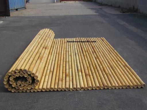 Bamboo And Cane Supplies Wholesale Bamboo Poles Bamboo