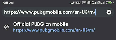 Pubg Mobile official Website