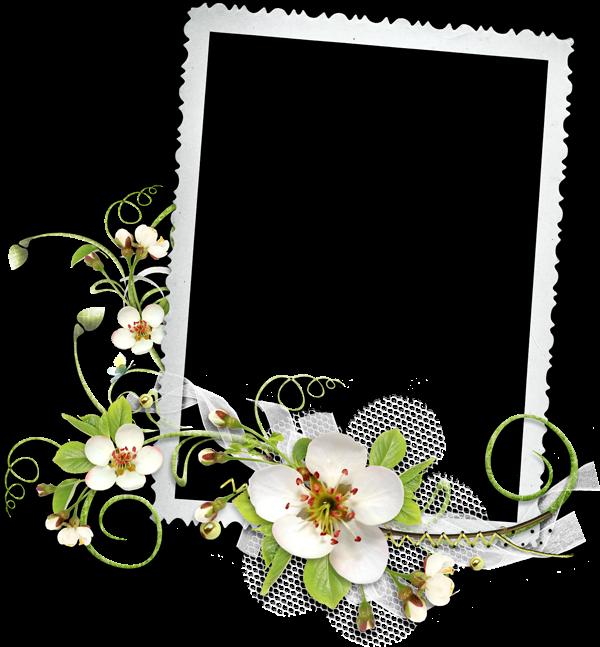 Grafica magica cornici in png per incorniciare le vostre foto for Cornici per 3 foto