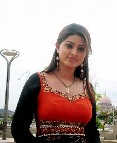 Actress Sneha Hot Photos