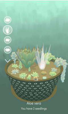 virtual pot