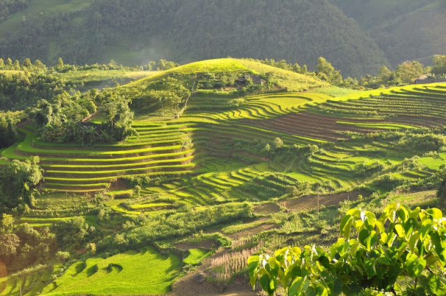 Top of the most beautiful Vietnam in the eyes of foreign visitors 8