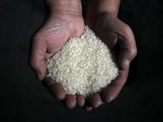 Imagem arroz