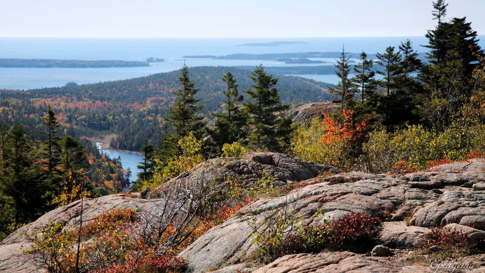 Acadia National Park, Download wallpapers