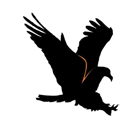 custom logo design black eagle
