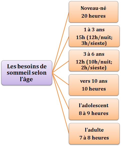 La durée de sommeil recommandée selon lâge JDM